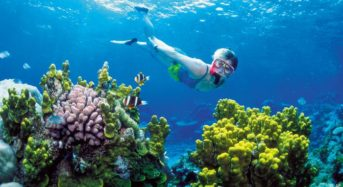 Tourism and Science Face The Great Barrier Reef