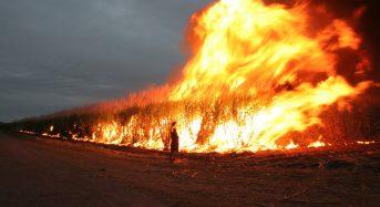 Australia's largest fire under control