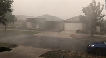 Rain in Australia expected to end pest fire